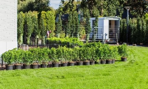 Moderne tuin IJsselstein